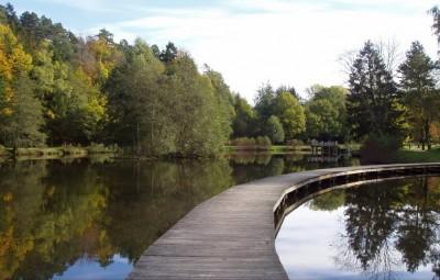 Etang de Pointhaie Bruyères (Photo google map)