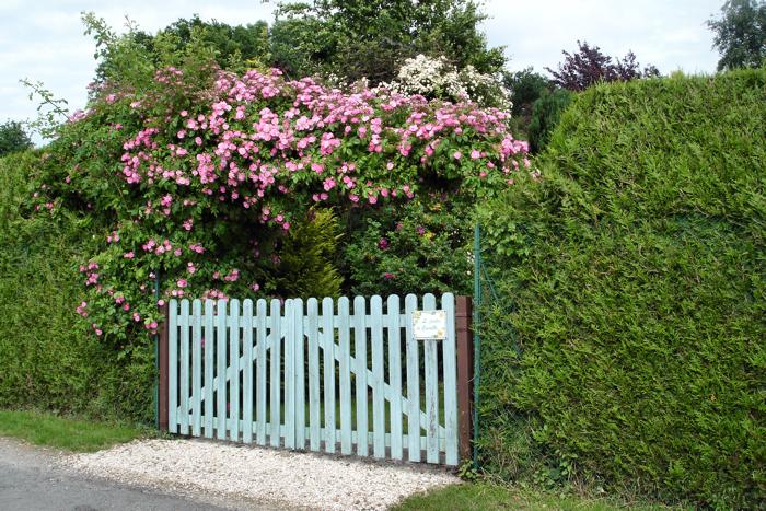 1175664-portail-sous-les-roses