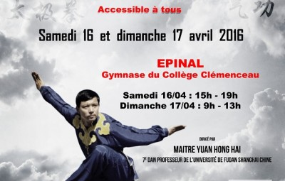 stage YUAN EPINAL 2016d