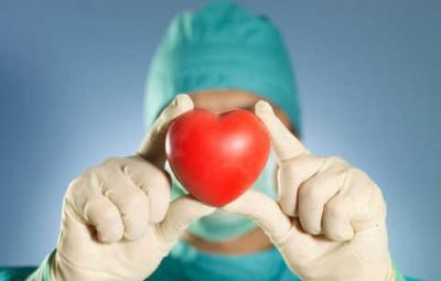 don-organes-
