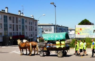 collecte-de-textiles-a-cheval