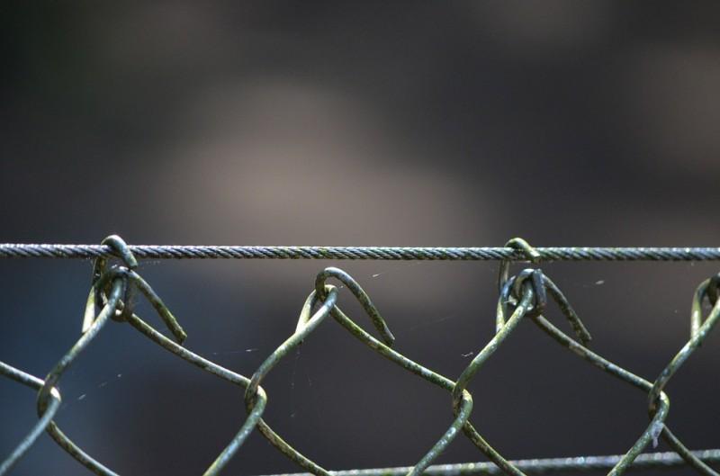 wire-mesh-421412_960_720