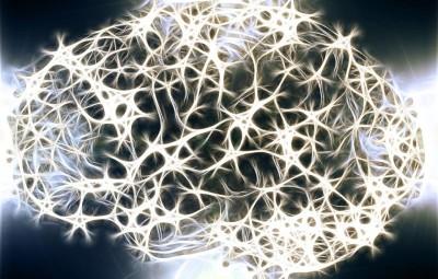 neurons-1739997_960_720
