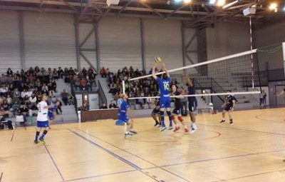 SAS VOLLEY AVIGNON