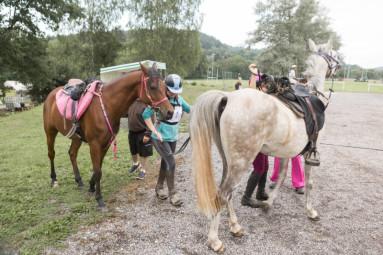 endurance-equestre-epinal (7)