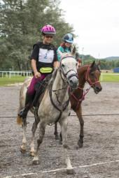 endurance-equestre-epinal (8)