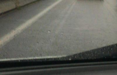 (photo FB info Radar Vosges)