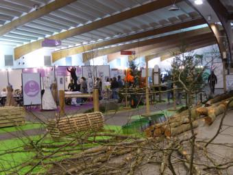 festival-des-metiers-epinal (1)