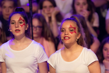 concert-chorale-chatel-college-louis-pergaud (22)