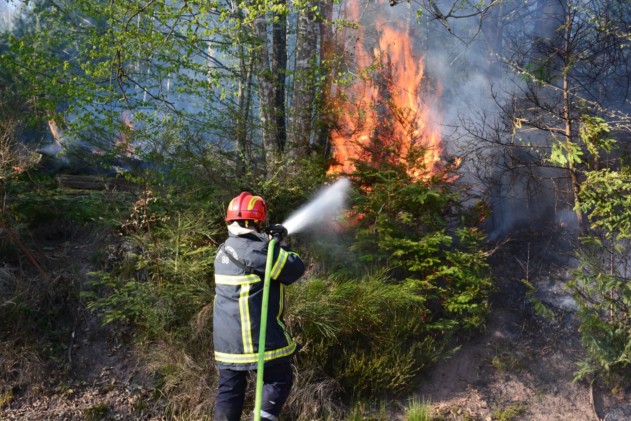 (Crédits photographiques Sapeurs-pompiers des Vosges)