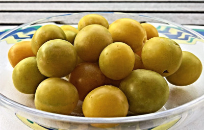yellow-plums-3598852_960_720