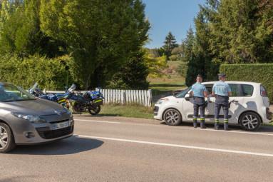 controle-gendarmes-vosges (10)