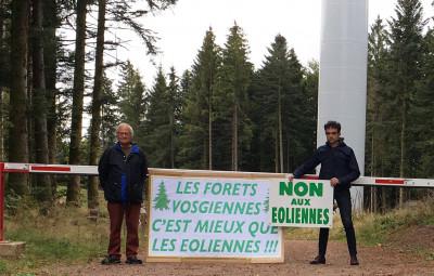 (Crédits photographiques « Paysage et nature de la montagne vosgienne » et « SOS massif des Vosges »)