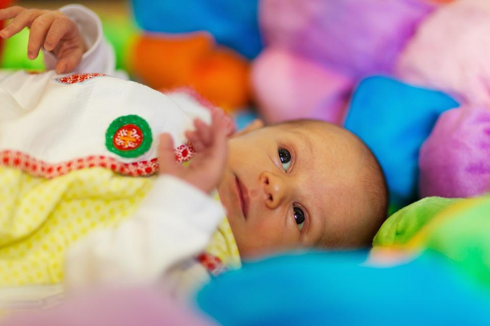adorable-19716_960_720
