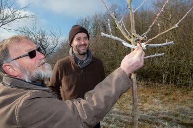 arbres-fruitiers-dogneville (7)