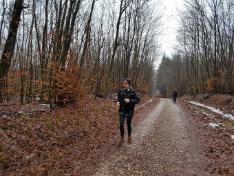 Baffapatte-La Baffe-trail  (2)