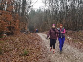Baffapatte-La Baffe-trail  (4)