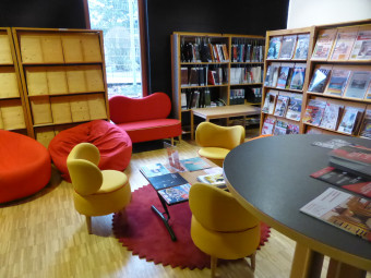 bibliotheque-universitaire-ENSTIB-epinal (2)