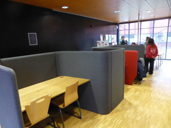 bibliotheque-universitaire-ENSTIB-epinal (6)