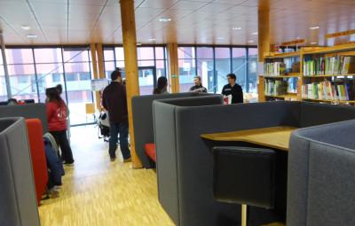 bibliotheque-universitaire-ENSTIB-epinal (7)