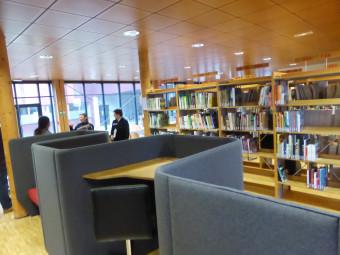 bibliotheque-universitaire-ENSTIB-epinal (8)