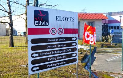 elivia-eloyes