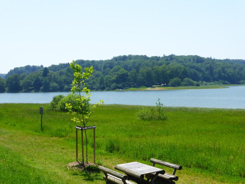 lac-bouzey-baignade (14)