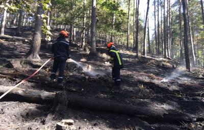 photographies sapeurs-pompiers des Vosges