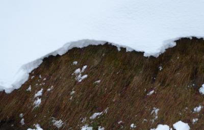 avalanche-vosges-neige