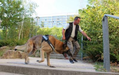photo Police nationale des Vosges