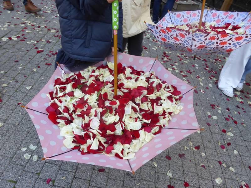 sainte-fleur-epinal (35)